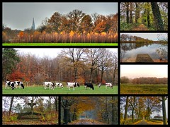 Autumn.. (Truus) Tags: