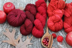 113in2013 #112 I wish...I knitted faster. (Karen Juliano) Tags: red fall wool leaves fruit wooden cinnamon spoon yarn cranberries apples