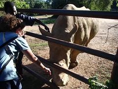 Uganda Wildlife Education Centre - Uganda