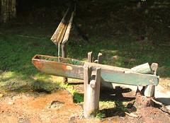 Monjolinho (Martha MGR) Tags: nature water gua natureza pura fonte nascente riacho monjolo guapura monjolinho guadebeber marthamgr hortoflorestalcamposdojordo