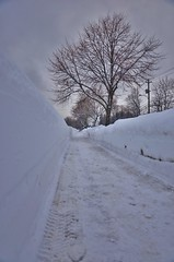 Tunnel of Snow I (evanlochem) Tags: new winter snow canada storm buried deep brunswick fredericton february snowfall heavy depth drifts banks snowplow snowpack snowcover