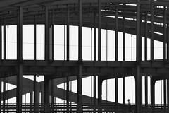 crossing the bridge (Scilla sinensis) Tags: bridge silhouette metal hamburg structure runner contour kontur fotosondag fs140223