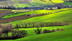 diagonali di campagna (Luigi Alesi) Tags: light shadow italy verde green nature landscape nikon scenery san italia raw country natura berta ombre severino campagna fields luci marche paesaggio macerata campi d90 sanseverino mygearandme mygearandmepremium mygearandmebronze mygearandmesilver mygearandmegold mygearandmeplatinum mygearandmediamond