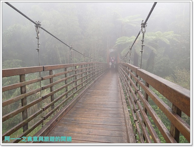 南投溪頭自然教育園區台大image011