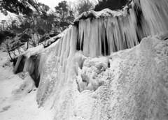 Frozen fall (threepinner) Tags: acros spd mamiya universal press 50mm sekor selfdeveloped f63 fall winter ice shiraoi hokkaidou hokkaido northernjapan japan 白老 カジカ沢 氷瀑 北海道 北日本 日本 mountainsnaps