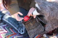 Arizona Picnic 15 (Tayma-Leigh) Tags: bjd minifee mnf fairyland rheia inessencecreations inessence crazykimochi gyhm fleecefeatherstudios