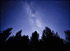 Night sky with the Milky Way over the forest and trees. The last light of the setting Sun on the bottom of the image (Digikuvaaja) Tags: stars milkyway space background forest silhouette universe backdrop nightsky nightshot infinite starry science galaxy abstract astrology astronomy astronomical astrophotography celestial black blue breathtaking constellation cosmos dark exposure interstellar long milky photograph night nebula real stardust sky way atmosphere cosmic deep colorful nature wallpaper starfield outerspace spectacular darkness infinity majestic field earth stellar