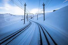 IMG_8653 (vitaminbea (Focus) - bea@vitaminbea.ca) Tags: zermatt matterhorn gornergrat nightshot longexposure landscape white winter snow neige blanc paysage paysagelblanc poselongue sky stars étoile