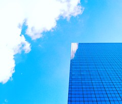 B.A.S.H.F.U.L.N.E.S.S. (ИicoW) Tags: photooftheday shycloud cloudporn cloud horizon skylovers bluesky skyporn reflections building reflectionperfection buildings reflection sunny sunshine reflectionshotz instacloud architecturelovers skies instaclouds cloudskye skyscraper brussels shy architectureporn architexture sunnyday cloudstagram bruxelles color lookingup cute naturaleza nature city town urban streetphotography windows mirror nikkor glass flickr sky blue clouds cityscape bashfulness moon