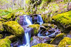 A beautifull waterfall... (Don Costello) Tags: dam nature cascada waterfall gura apelor nikon d3300 hunedoara landscape romania water forest