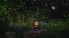 DSC03351 (ShuHao Cheng) Tags: sony a7r2 sal1635z firefly astroboy