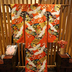 Gorgeous Kimono thumbnail