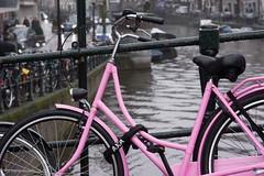 DSC05074 (De Hollena) Tags: amsterdam bicycle fahrrad fiets pluie rain regen velo bicyclette pink rosa rosé roze