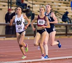 Stanford Invitational 2017 (harjanto sumali) Tags: stanfordinvite 10000m alexapelletier karisjochen ncaa stanfordinvitationalstanfordinvite field sport track trackfield trackandfield