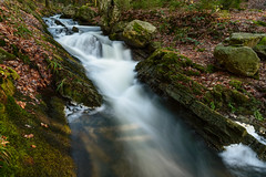 Chefna River (gillesfrancotte) Tags: 2017 amblève ardennes aywaille chefna d800 nikon outdoor quarreux stoumont cascade creek eau fall landscape longexposure nature printemps spring stream torrent water waterfall waterscape wallonie belgique nikonpassion