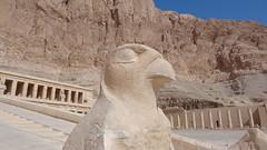 Temple of Hatshepsut (Rckr88) Tags: temple hatshepsut templeofhatshepsut temples deir elbahari luxor egypt deirelbahari ancient ancientegypt relic relics pharoah pharoahs africa travel travelling mountains mountain cliff cliffs statue statues horus