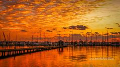 Golden Orange Sunrise (tclaud2002) Tags: sun sunrise marina boats sailboats river stlucieriver sky clouds cloudy orange gold golden reflect reflects reflection nature mothernature seascape outdoors outside stuart florida