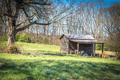 Rural Shed - Oconee Co., S.C. (DT's Photo Site - Anderson S.C.) Tags: canon 6d 24105mml lens townvillesc oconee co south carolina rural country roads barn shed vanishing southern american landscape pastoral rustic farm culture