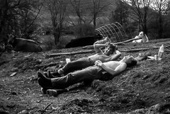 Diet Coke Break - 1988 (Craig Hannah) Tags: yorkshiredalesnationalpark work wardens lunchbreak grassington linton workers dietcokebreak craighannah yorkshire dales 1988 fencing ydnp england uk funny rest
