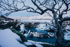 the tree and glanni (t.basel) Tags: rot iceland island landscape nature snow waterfall waterfalls float floating long time exposure explor discover water iced ice icicle colors reflection mountains mountain hills creek sony a7ii samyang 24mm 14 rokinon walimex bowers vsco kodak ektar