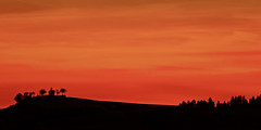Eifel - Bilder einer Landschaft (memories-in-motion) Tags: vulkaneifel eifelstig eifel landschaft steffeln kapelle silhouette rot abend abendrot profil panorama minimalism sky wave trees eifelland peace canon 7d auel