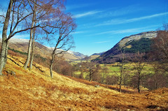Woodland Walk (eric robb niven) Tags: ericrobbniven scotland glenlyon landscape walking perthshire