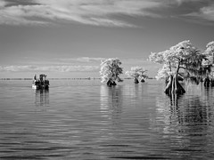 Photographing Blue Cypress Lake (Ed Rosack) Tags: peoplephotography cypress usa landscape calm water bluecypresslake ©edrosack lake florida infrared cloud sky centralflorida candid boat tree blackandwhite bw cloudy ir verobeach