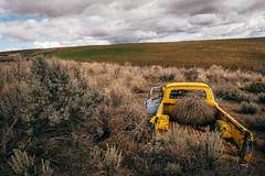 Last Ditch (Pedalhead'71) Tags: douglascounty washington abandoned truck