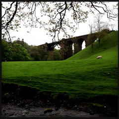 Lune Viaduct (Fotorob) Tags: verenigdkoninkrijk engeland lowydc victorian spoorbrug cumbria wegenwaterbouwkwerken land weide brug heuvels erringtonjohn lockejoseph architecture stijl england architectura architectuur firbank