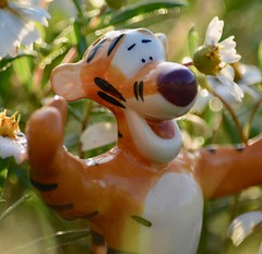 Tiggerific! (Kreative Capture) Tags: glaze macromondays salt pepper tigger pooh disney shakers wildflowers bokeh hug smile macromonday happy cute hmm daisy white wildflower macro