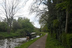 Nb Tansy westbound out of Haggonfields (Roger Bunting) Tags: chesterfieldcanal haggonfields narrowboat nb tansy worksop