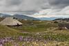 Velika Planina (Criv3) Tags: slovenia slovenija velika planina zafferano saffron