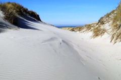 Dunes (De Rode Olifant) Tags: northsea marjansmeijsters terschelling thenetherlands