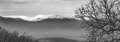 Winter Feeling (stylianosl) Tags: fineart stylianosphotography landscape art landsceene nature corfu mountains bw finephotography landscapes blackwhite albania trees artphotography blackandwhitephotography landscapephotography snow black naturecolors stylianos blackandwhite sunset white