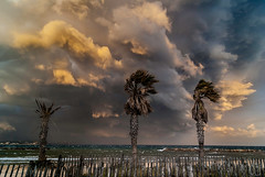 Gathering storm (Karol ...) Tags: stormyweather clouds elements whirlwinds storm