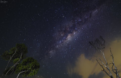 Beachmere Milky Way (Stephen Spence 1965) Tags: landscape astrophotography milkyway stars beachmere trees