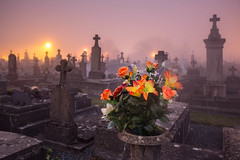 Cemetery Kitsch (marcovannotti) Tags: cemetery fog spooky flowers france rip perigordlimousin night lights