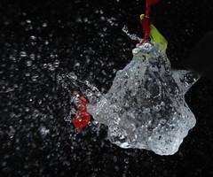 Water Ballon Frozen In Time (Sofia Schakel) Tags: waterphoto waterphotography photography waterfrozenintime frozenintime waterballoon pop popped poppedwaterballoon