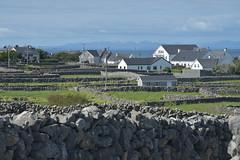 Inis Oírr - Inisheer Island (bobglennan) Tags: ireland nikond750 inisheer aran landscape hazy blue whitewash stonewalls charm