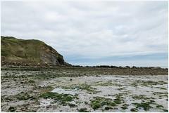 Eb (HP025399) (Hetwie) Tags: kust coast cap france frankrijk cotedopale lowtide opaalkust eb sea strand capblancnez capgrisnez zee audinghen hautsdefrance fr