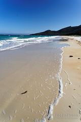 20170414-12-Hazards Beach (Roger T Wong) Tags: 2017 australia freycinet freycinetnationalpark hazardsbeach np nationalpark rogertwong sel2470z sony2470 sonya7ii sonyalpha7ii sonyfe2470mmf4zaosscarlzeissvariotessart sonyilce7m2 tasmania beach bushwalk camp clouds hike ocean outdoors sand sea sky tramp trek walk waves