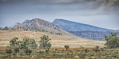Flinders Ranges weekend (Susan Whitbread) Tags: flindersranges clouds outback spinifex plains ranges southaustralia outdoors