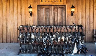 Arkansas Duck Hunting Lodge - Stuttgart 16