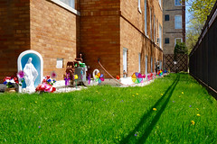 a shrine to spring (KevinIrvineChi) Tags: virginmary shrine flowers plastic pinwheel yard grass grassy sunny shadow fence brick green bluesky dolphins water meter gas corners dandelions purple flower spring 2017 chicago chicagoist consumerist curbedchicago lincolnsquare ravenswood garden gardens decorative decorations swan planter white colorful springy sony dscrx100