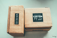 Custom Pedals by Electricnim (Daniel Y. Go) Tags: fuji fujixpro2 xpro2 philippines electricnim pedals music guitar boutiquepedals