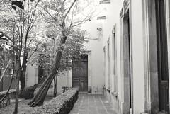 Al final del corredor. (spawn5555) Tags: corredor arquitectura edificio colonial antiguo aguascalientes méxico centro ciudad city urban histoire historia history nikon d3000 photographie fotografía beautiful