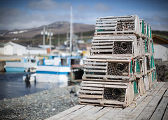 Pots On Deck (Peter Brake) Tags: boats lobsterpots grosmorne lobstertraps troutriver gmnp westernnewfoundland 50mmf12l