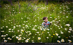 Baby enjoying flowers, Los Alerces park, Patagonia (exposedplanet) Tags: family flowers patagonia baby love smile happy lupins lupines
