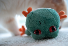 SOS! (Hamid.A) Tags: closeup soft play sad close frog playtime softtoy sadface hunted