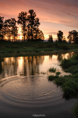 Ripples (ithinkyoureawesome!) Tags: canada reflection water sunrise river nikon britishcolumbia ripple mapleridge d7000 nikond7000